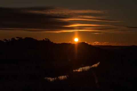 Marthas-Sunrise