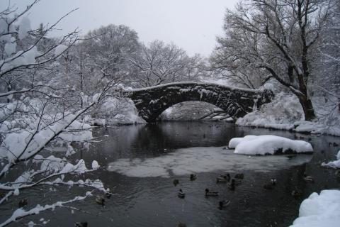 Gapstow-Winter