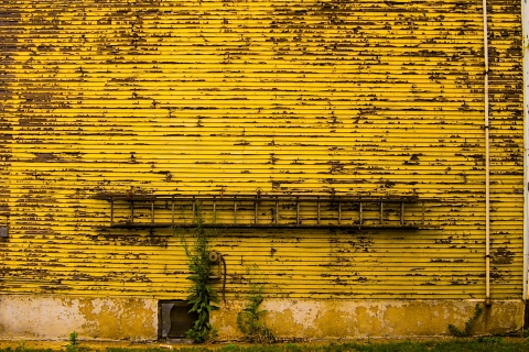 Pittsburgh-Yellow