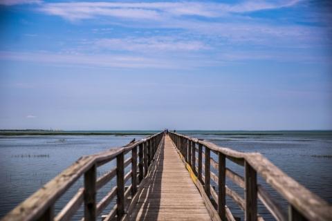 Water-Walk